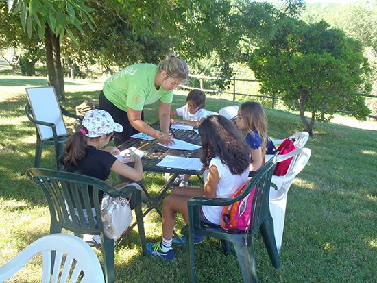 Outdoor English lessons